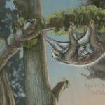 Палеонтологи выяснили, как у млекопитающих сформировались современные уши