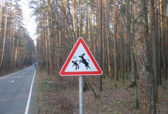Российским водителям грозит «фотовидеофиксация»: собрали топ жутких дорожных знаков