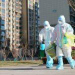 В континентальном Китае зафиксировано 11 новых случаев заражения COVID-19