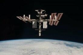 Ученые нашли микроорганизмы с защитой от факторов воздействия космоса