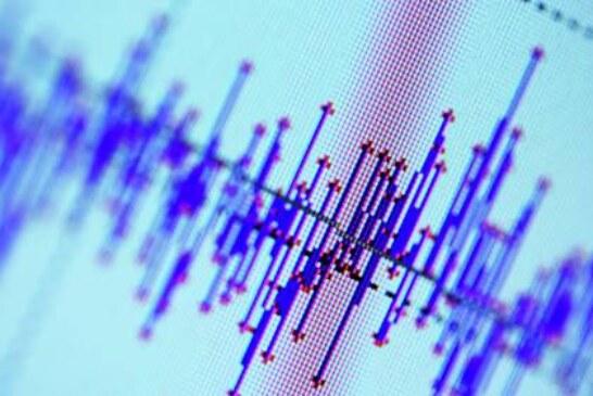 У берегов Камчатки произошли три землетрясения магнитудой до 4,5