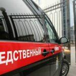 В Оренбургской области бездомная собака напала на ребенка