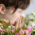 Пыльца и изменение климата: почему сезонная аллергия начинается раньше